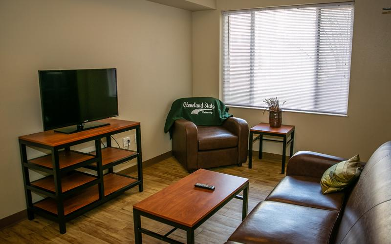 Photo of a living room in the Euclid Commons residence hall